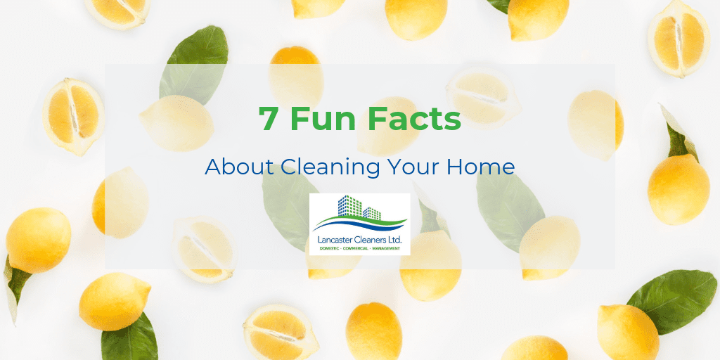 7 Fun Facts About Cleaning Your Home