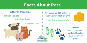 facts about pets